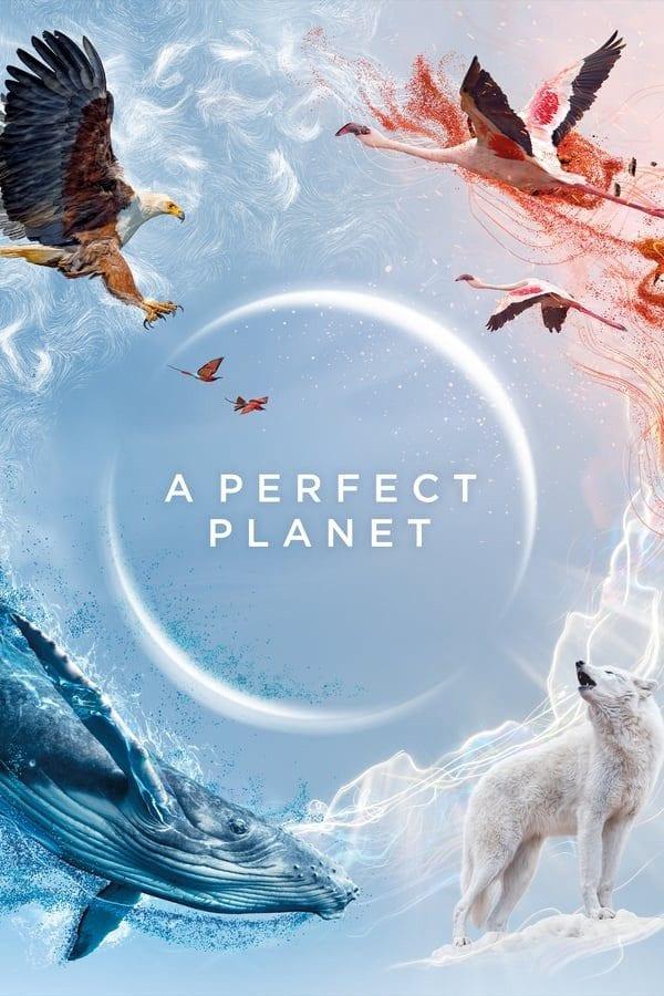 A Perfect Planet Season 1 Episode 1 – 5   Mp4 Download