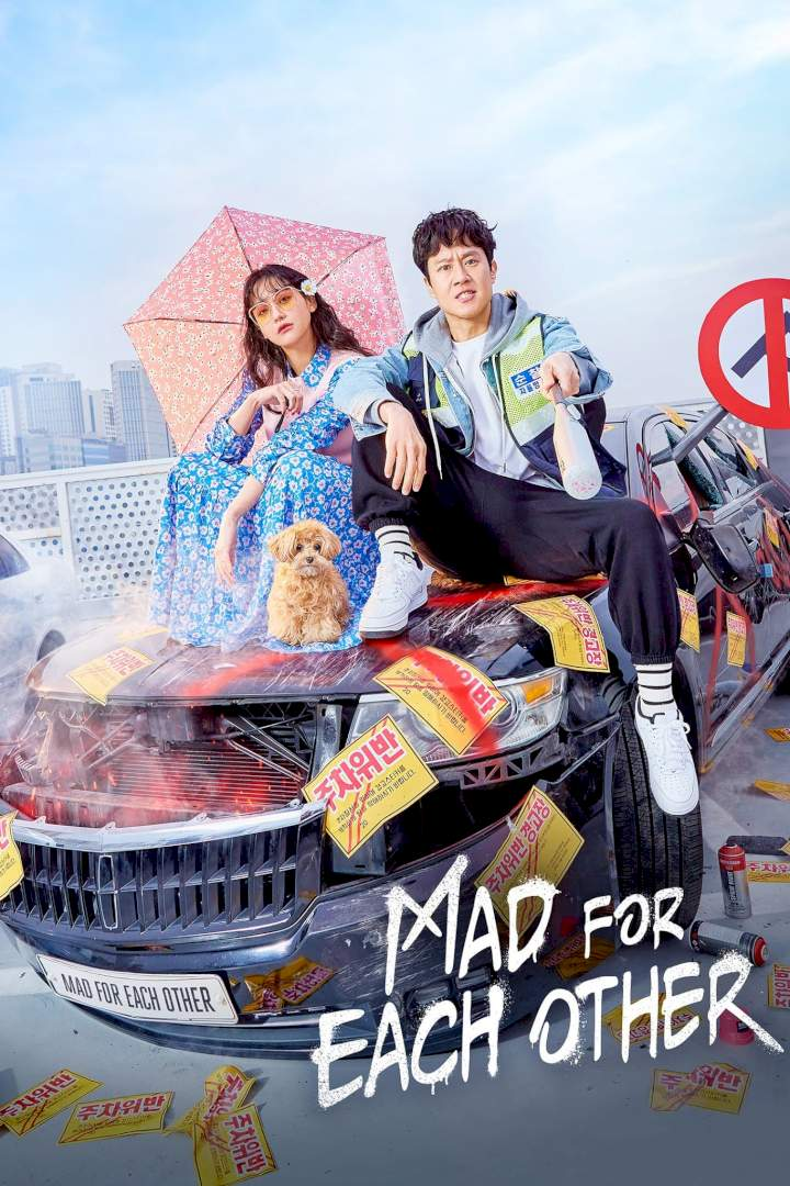 Mad About Each Other Episode 1 - 6 (Korean Drama) | Mp4 Download