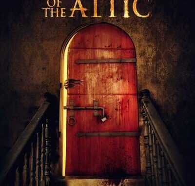 Stay Out of the Fucking Attic (2020) Mp4 & 3gp Download